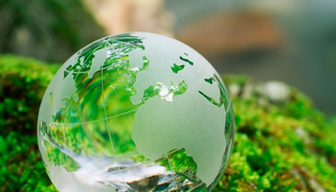 a etched glass earth globe sitting on a mossy hill